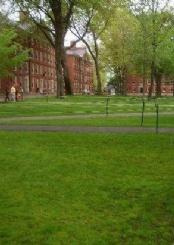 美国哈佛大学校园风光