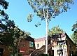 澳大利亚纽卡斯尔大学校园风光