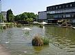 英国布鲁内尔大学院校风光(三)