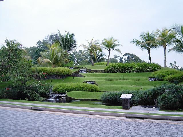 新加坡南洋理工大學院校風光(一)