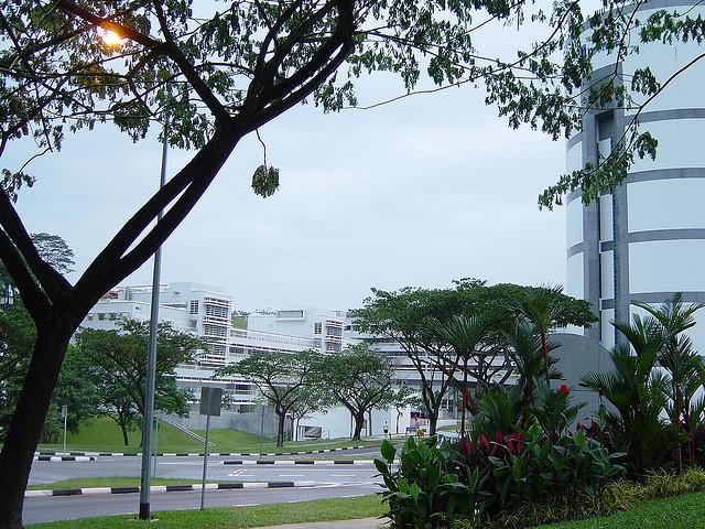 新加坡南洋理工大学院校风光 一