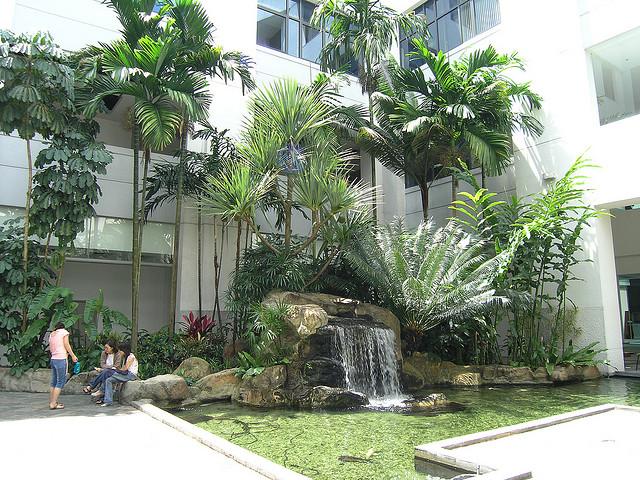 新加坡管理学院校园风光(三)