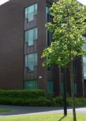 爱尔兰国立利莫瑞克大学校园风光(一)
