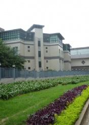 香港岭南大学院校风光(五)