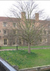 剑桥视觉及表演艺术学校风光一览(二)
