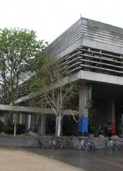 都柏林大学