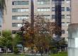 茨城大学风光一览