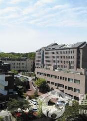 首尔女子大学风光组图