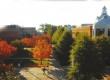 乔治梅森大学校园风光