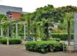 爱尔兰都柏林城市大学院校风光(一)