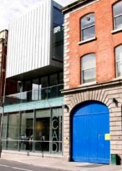 爱尔兰国立艺术设计学院