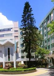 香港浸会大学院校风光(二)