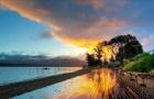 在新西兰留学