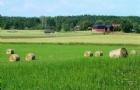 瑞典留学条件