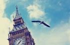 如何快速适应移民英国后的生活?
