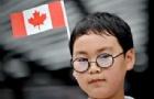 加拿大移民申请要多少费用