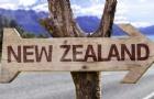 新西兰技术移民流程