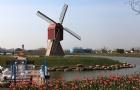 荷兰留学H类院校的申请情况