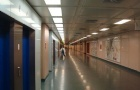 维也纳医科大学排名情况