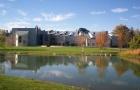 艾因·夏姆斯大学入学要求