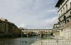 佛罗伦萨音乐学院专业设置