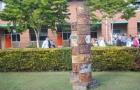 最新澳洲南十字星大学优势专业介绍