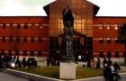 胡安卡洛斯国王大学课程设置