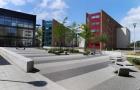 英国布鲁内尔大学课程设置