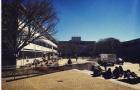 Massey Manawatu Campus梅西大学校园