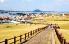 韩国留学的新政