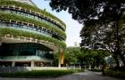 新加坡管理大学专业怎么样