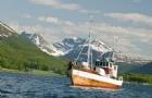为什么选择到挪威留学��