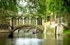 英国留学年度热搜专业排行榜