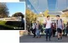 研究生留学新西兰梅西大学要求