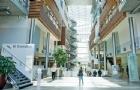 挪威商学院有哪些招生项目