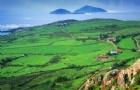 爱尔兰留学哪些专业可以实习?