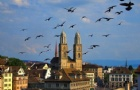 瑞士留学金融专业