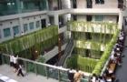 泰国农业大学禁忌盘点
