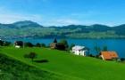 瑞士留学丨四大热门专业