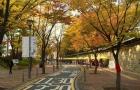 韩国汉阳大学学科设置情况