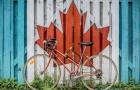 中专生可以申请去加拿大读本科吗?