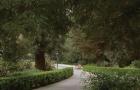 华盛顿基督复临大学排名怎么样