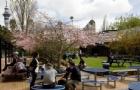 奥克兰大学大数据专业排名