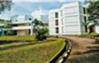 新加坡国际学校IB、IGCSE、AP课程