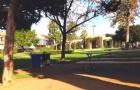 阿尔弗莱特大学