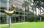 留学新加坡公立大学的申请条件