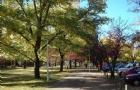 澳洲国立大学统计学世界排名