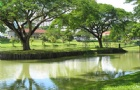 马来西亚理科大学专业