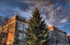 2019年加拿大阿尔伯塔大学录取要求