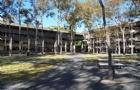 澳大利亚麦考瑞大学读会计本科申请条件